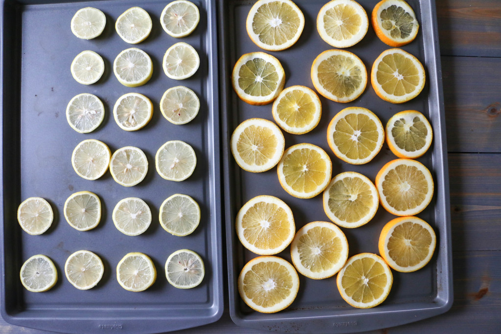 citrus slices2